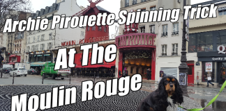 archie at moulin rouge paris