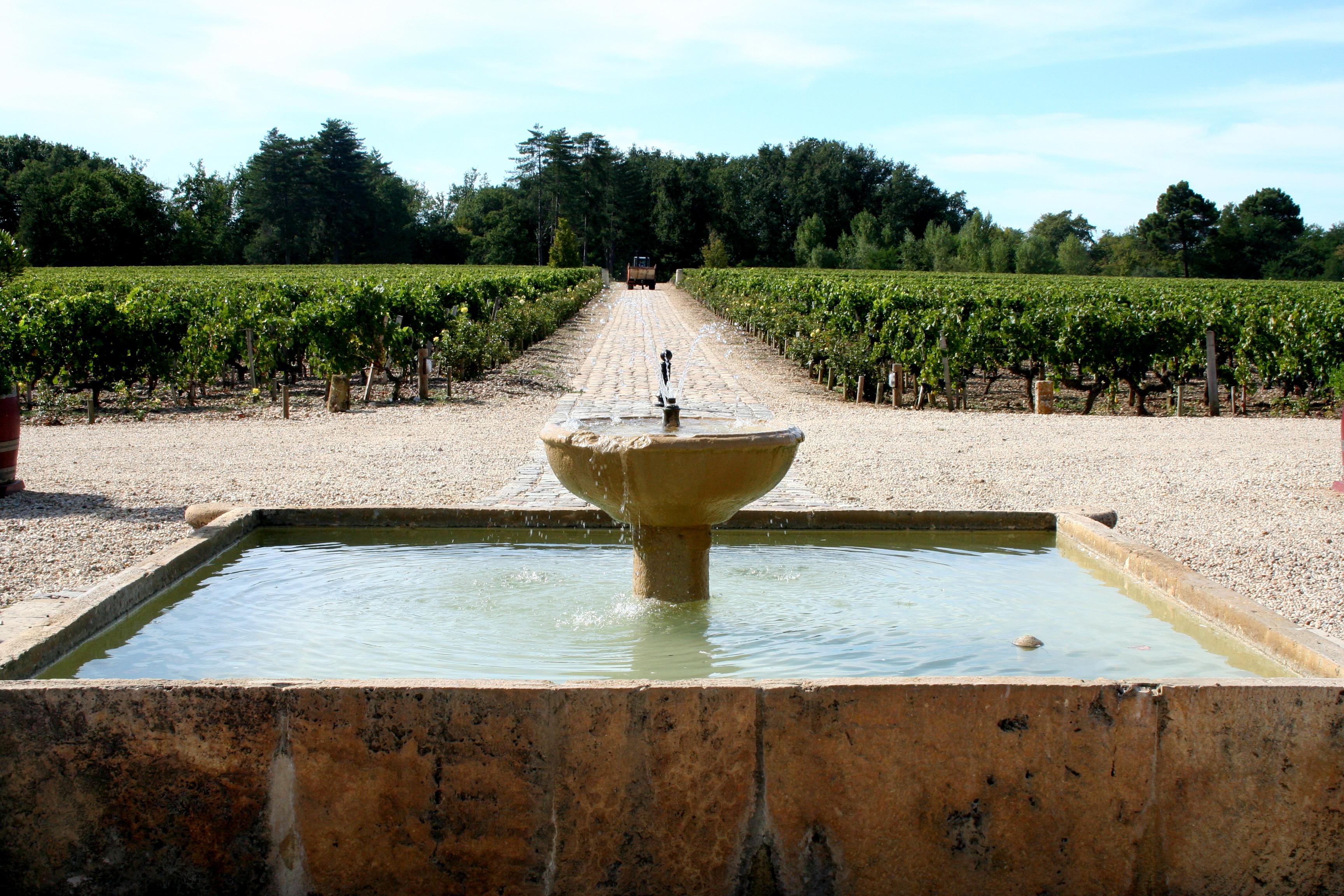 bordeaux vineyard near paris